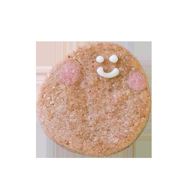 水をきれいにする微生物クッキー・アナモックス