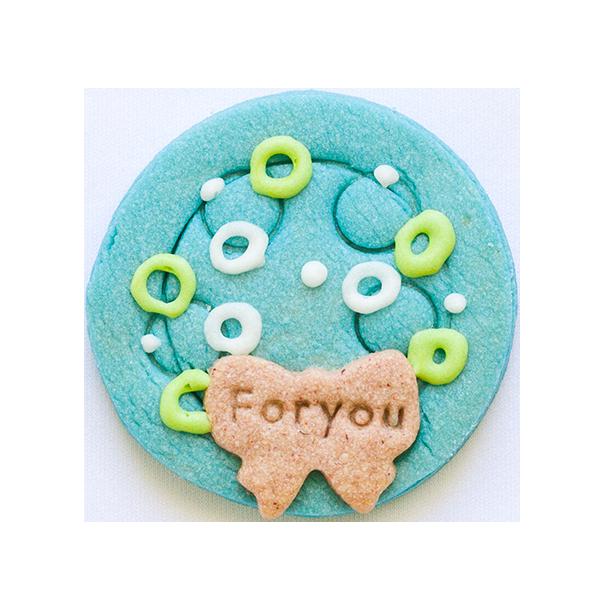 微生物クッキー・ボルボックス