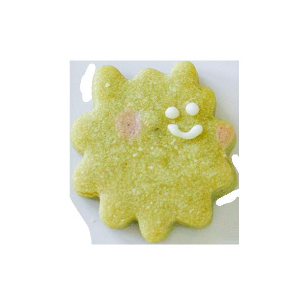 微生物クッキー・ボツリ オコッカス
