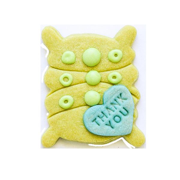 微生物クッキー・イカダモ