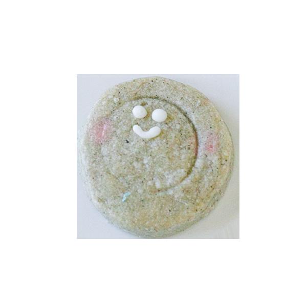 微生物クッキー・メタノサルキナ